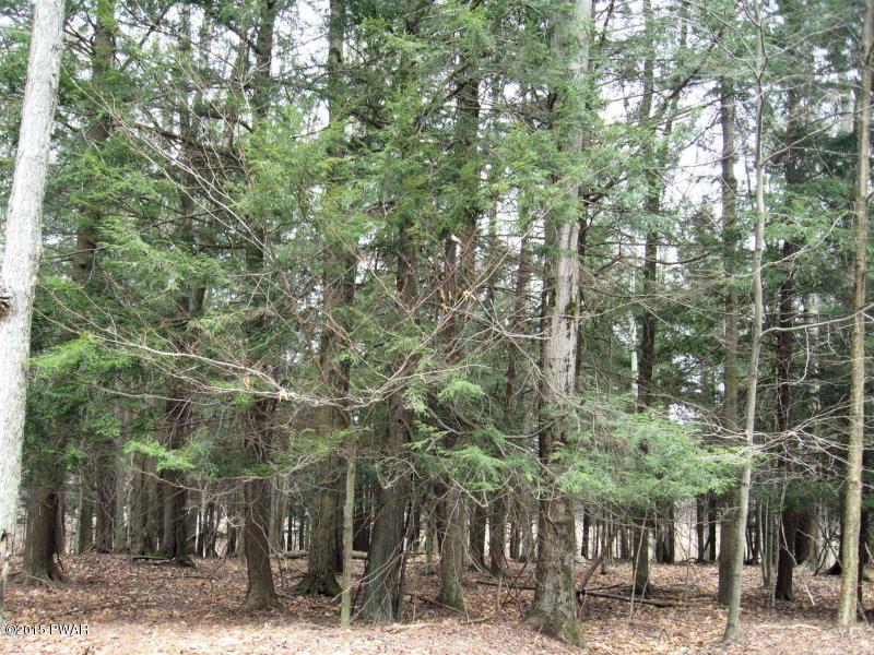 Lot 812 Pine Creek Rd, Lakeville, PA 18346