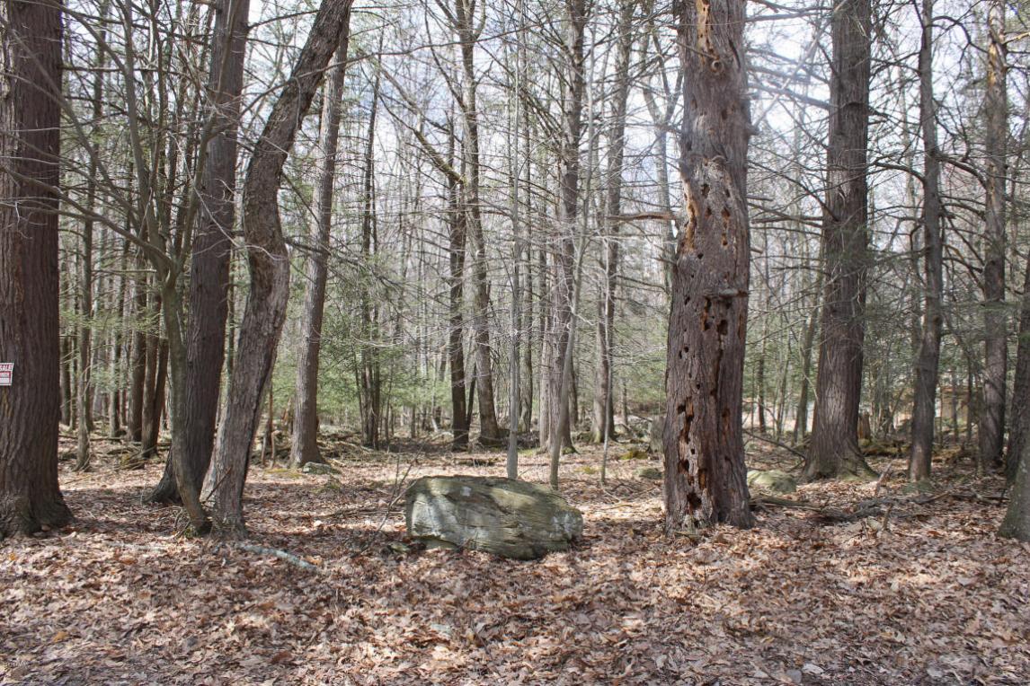 124 Pine Hill Dr, Lakeville, PA 18438