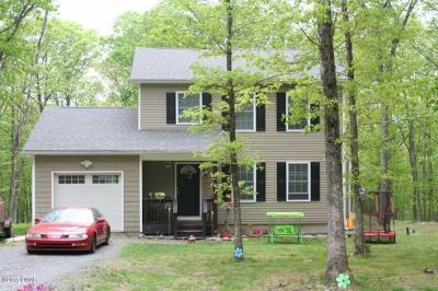Photo of 134 Woodledge Hills Dr, Hawley, PA 18428