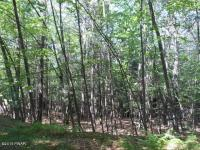 LOT 389 Creek Court, Hawley, PA 18428