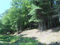 LOT 794 Tink Wig Dr, Hawley, PA 18428