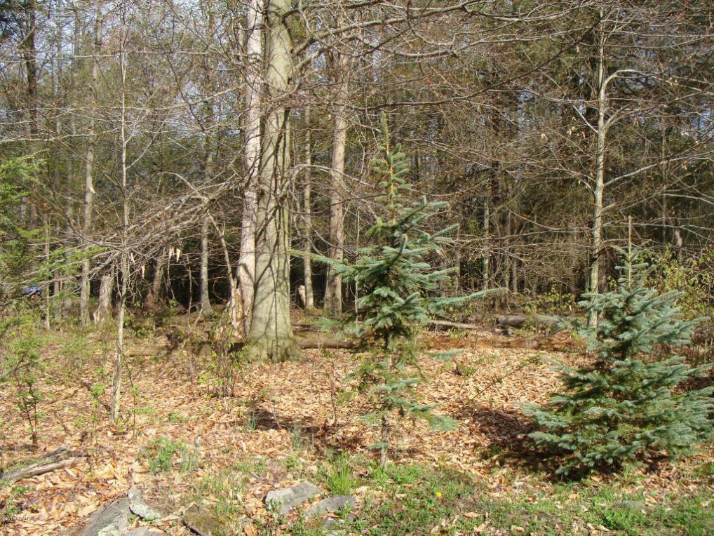lot 13 Game Trail Dr, Greentown, PA 18426
