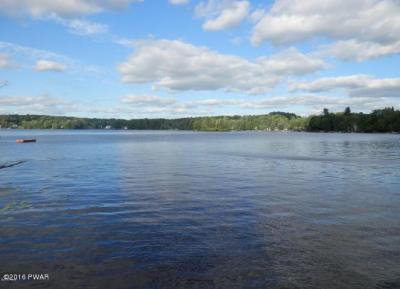 Photo of 286 W Shore Dr, Lake Ariel, PA 18436