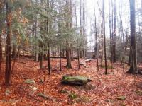 Lot 1041 Hibernation Rd, Lake Ariel, PA 18436