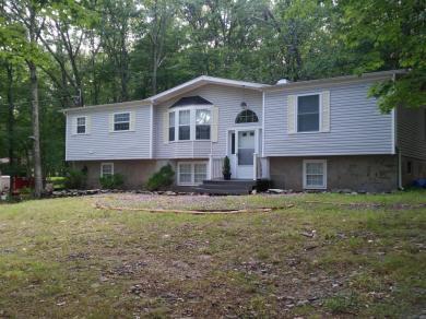 171 Chipmunk Rd, Bushkill, PA 18324
