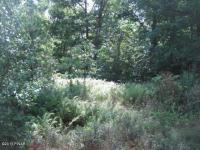 LOT 15 Fox Ridge Park Dr, Greeley, PA 18425