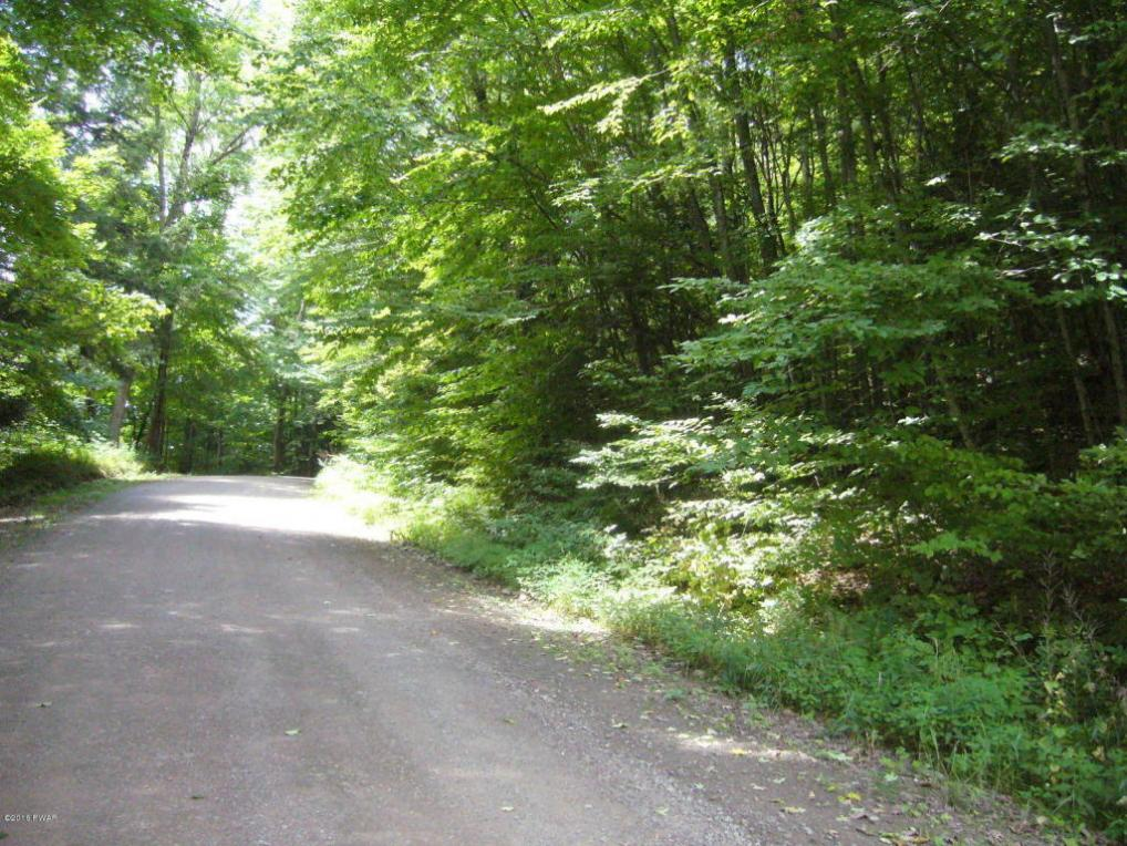 Willoway Rd, Starrucca, PA 18461