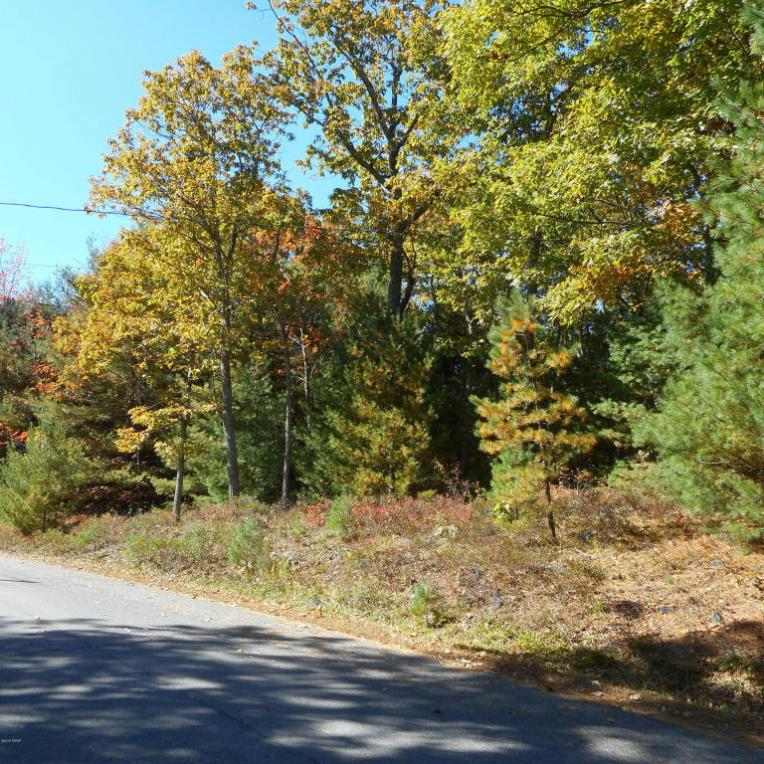 Resers Way, Dingmans Ferry, PA 18328
