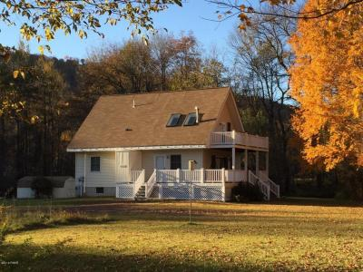 Photo of 4136D River Rd, Equinunk, PA 18417