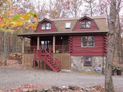 Photo of 100 Rodeo Drive, Lords Valley, PA 18428