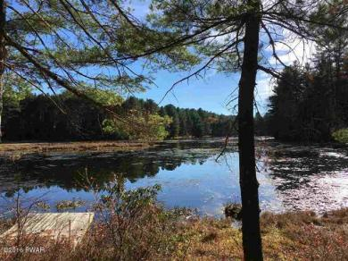 Lot 3.55 Mathias Weiden Dr, Narrowsburg Ny, NY 12764