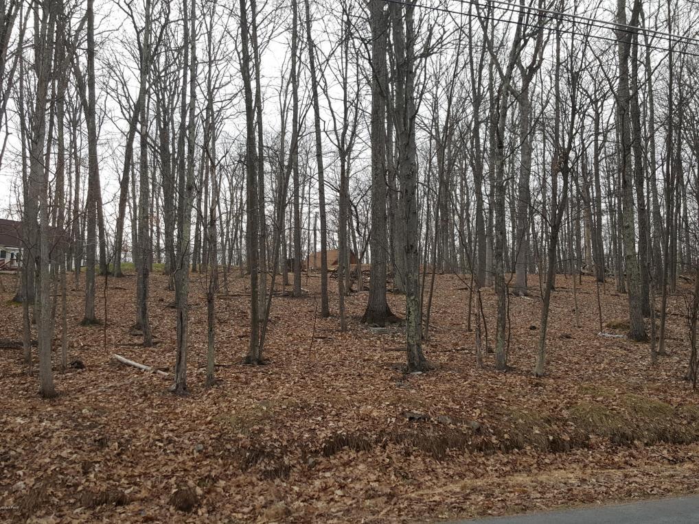 195 Forest Ridge Dr, Hawley, PA 18428