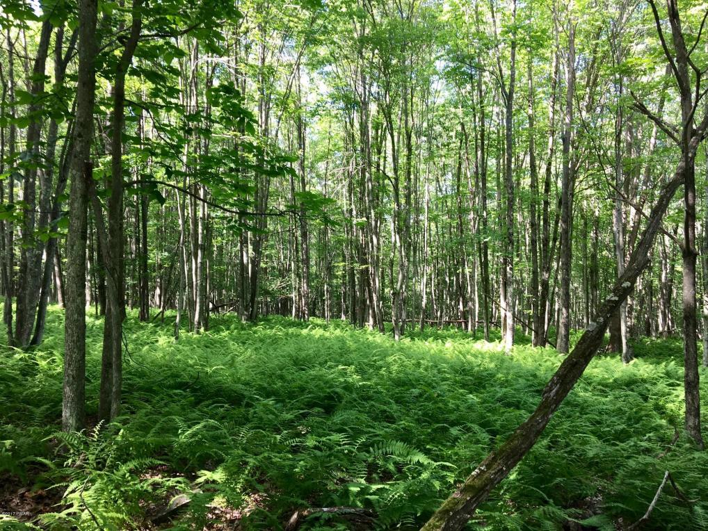 46 Deer Run Rd, Hawley, PA 18428