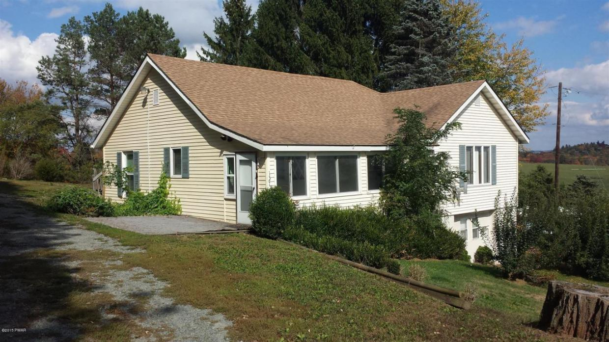 1395 Cochecton Tpke, Tyler Hill, PA 18469