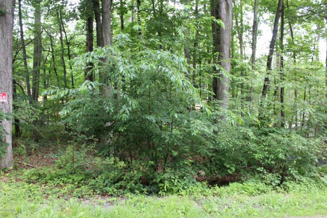 8 Park Rd, Lakeville, PA 18438