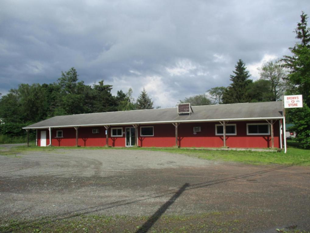 2866 Bethany Tpke, Pleasant Mount, PA 18453