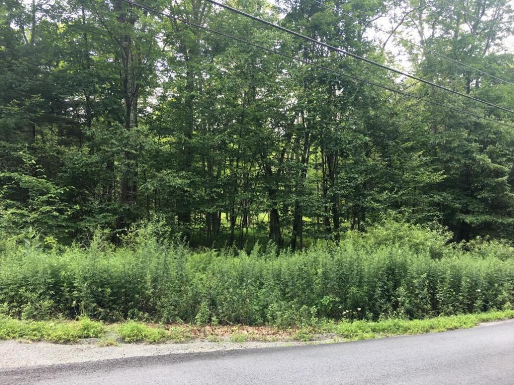 99 Water Forest Dr, Dingmans Ferry, PA 18328