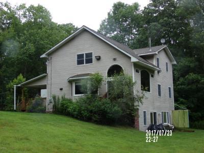 Photo of 161 Daub Rd, Narrowsburg Ny, NY 12764