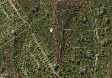 Lot 24 Timber Ridge Dr, Shohola, PA 18458
