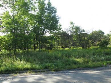 Cortez Rd, Jefferson Township, PA 18436