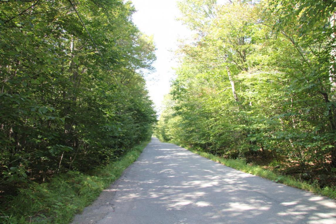 Pleasant Mount Dr, Forest City, PA 18421