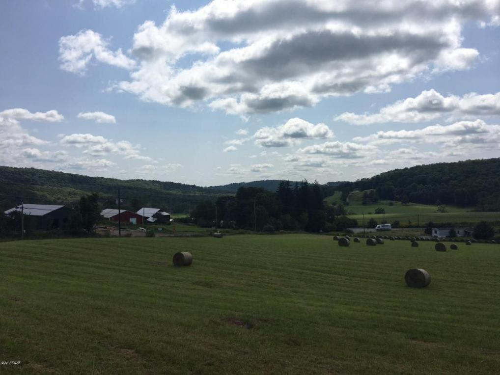 Rutledgedale Rd, Tyler Hill, PA 18469