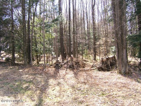 220 Twin Rocks Rd, Hamlin, PA 18427