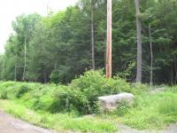 6 Phillips Rd, Newfoundland, PA 18445