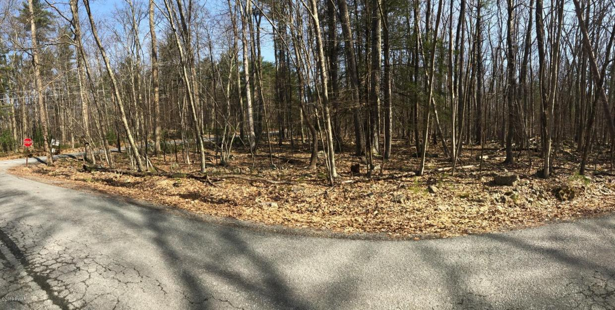 Lot 18C Hemlock Lane, Lakeville, PA 18438
