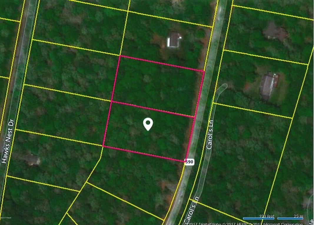 Lot 53 Route 590, Hawley, PA 18428