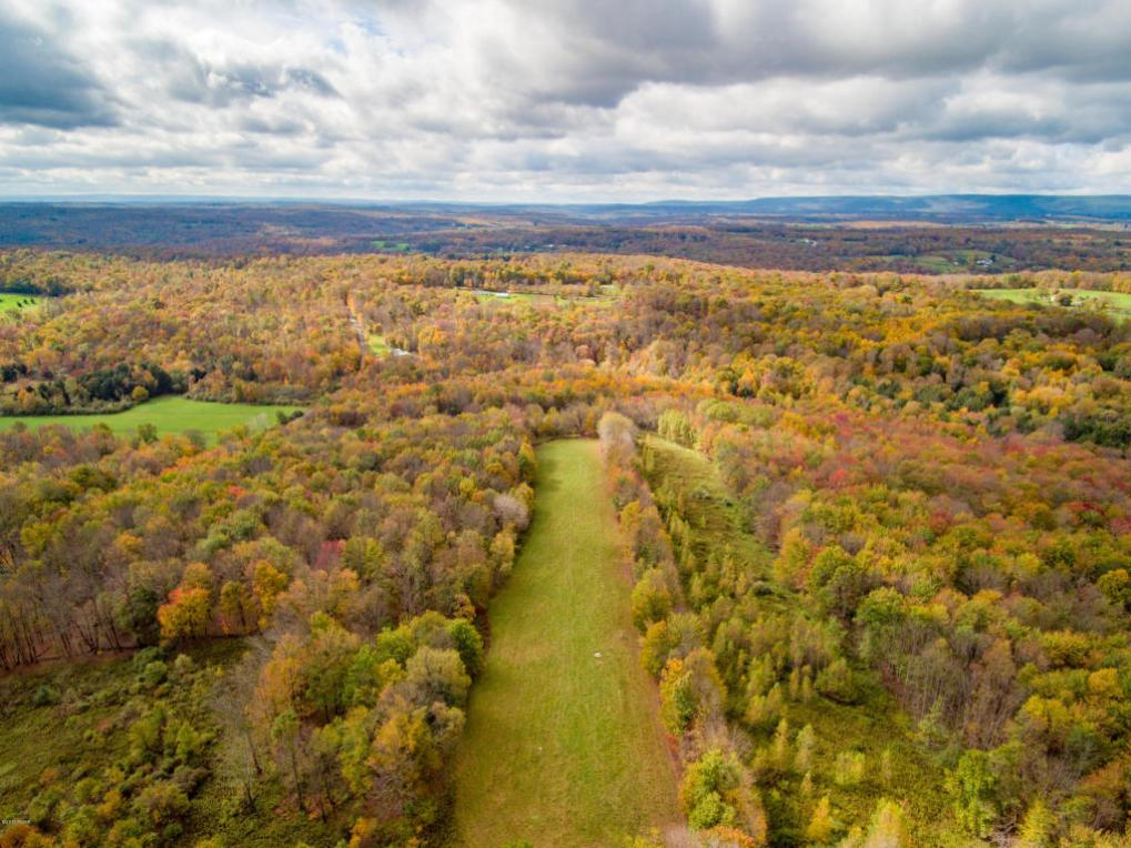 Camp Rd, Honesdale, PA 18431