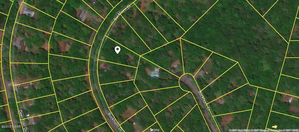124 Buckhorn Dr, Hawley, PA 18428
