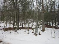 107 Hemlock Ct, Lackawaxen, PA 18435