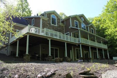 Photo of 463 Finn Swamp Rd, Lakeville, PA 18438