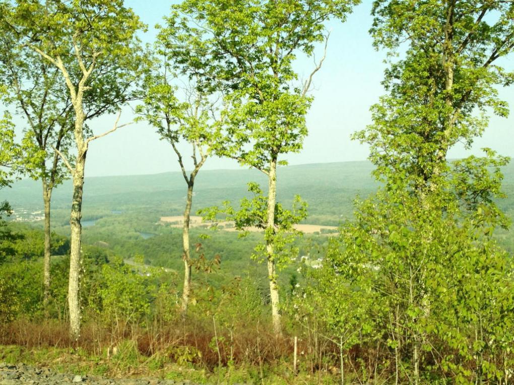 53, 56-59 Summit Ct, Milford, PA 18337