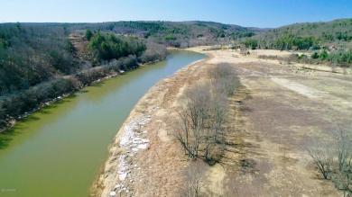 1310 River Rd, Milanville, PA 18443