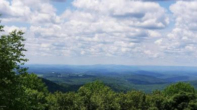 339 Mountain Rd W, Union Dale, PA 18470