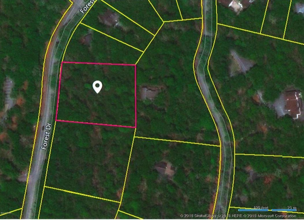 Lot 6 Forest Dr, Hawley, PA 18428
