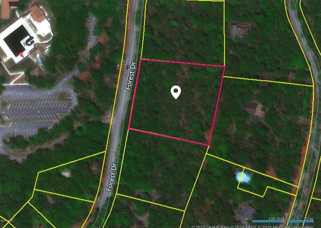 Lot 7 Forest Dr, Hawley, PA 18428