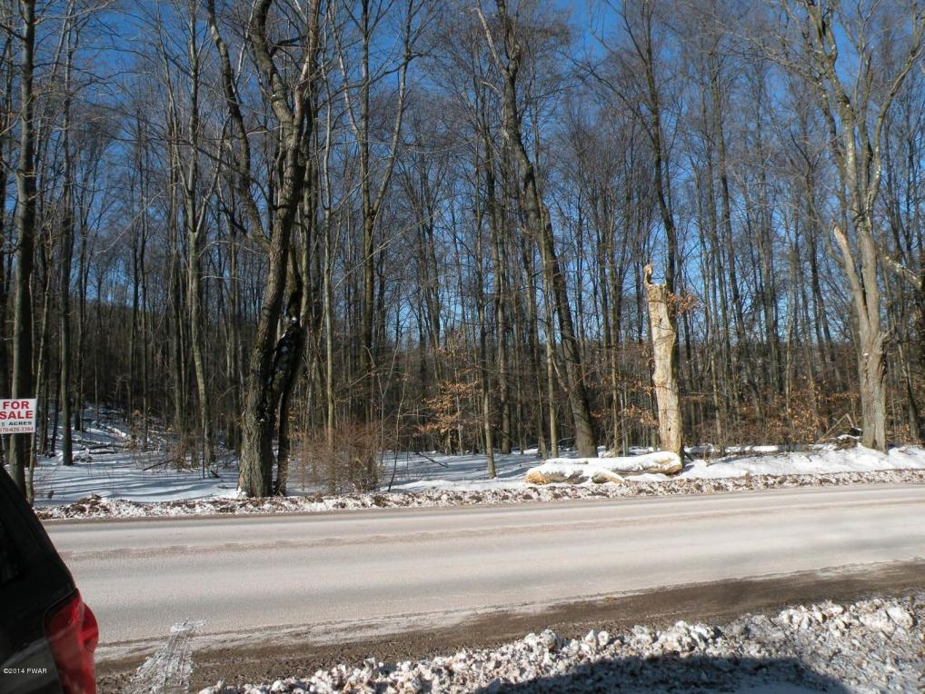 Lot 1 Route 196, Sterling, PA 18463