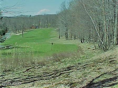 100 Beartrap Mountain Dr, Greentown, PA 18426