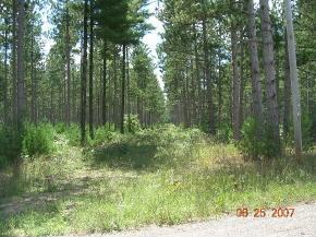 Hwy 21 #3, Coloma, WI 54930
