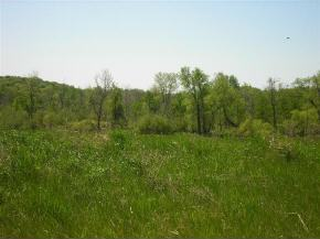 Lot 17 Hickory Twin Ln #17, Eden, WI 53019