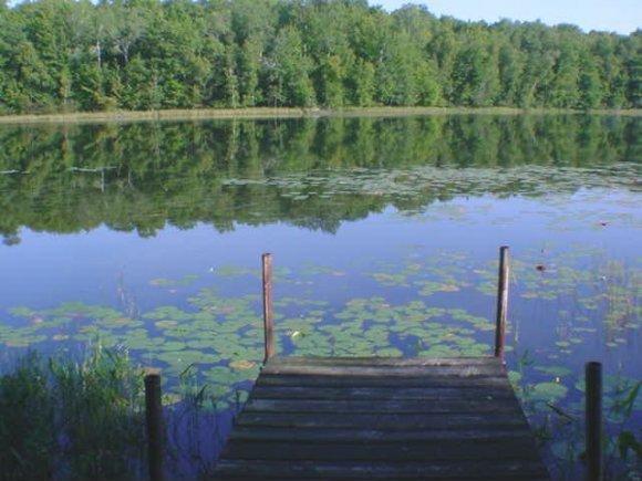 Lot 11 N Kelly Lake #11, Suring, WI 54174