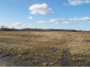 Prairie Fox, North Fond Du Lac, WI 54937