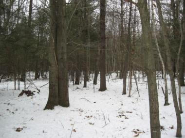13404 Bloom Rd, How Town Of, WI 54124