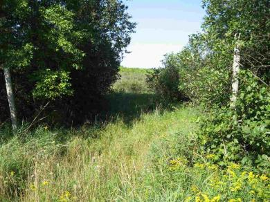 Campground Rd, Seneca Town Of, WI 54166