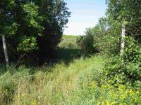 Campground Rd, Shawano, WI 54166