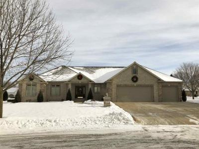 Photo of 2021 Whistling Swan, De Pere, WI 54115