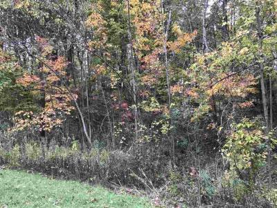 Photo of Choctaw, Green Bay, WI 54313